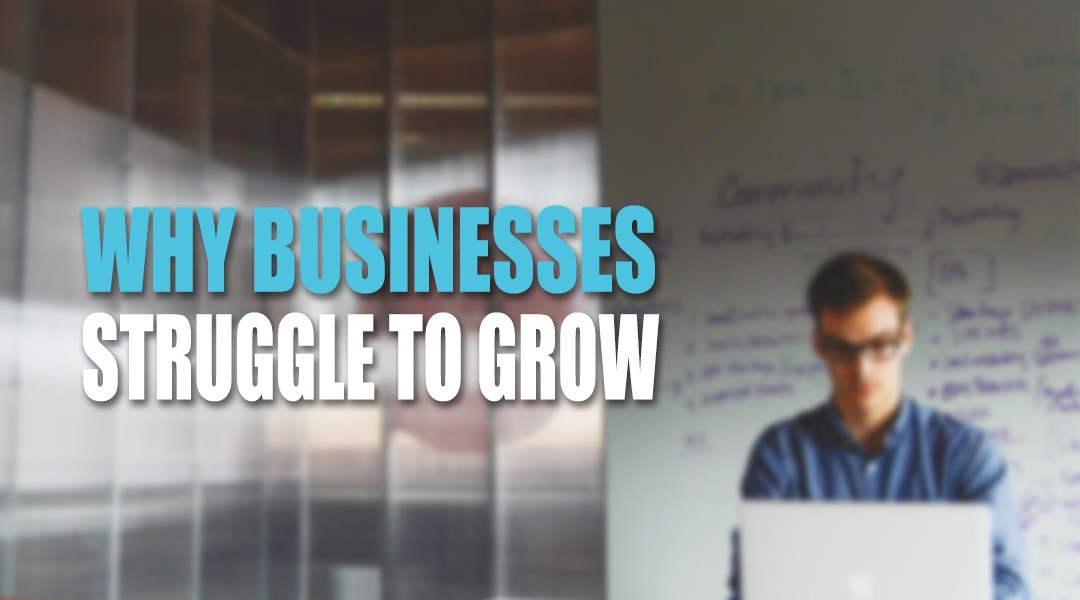 Why Businesses Struggle to Grow